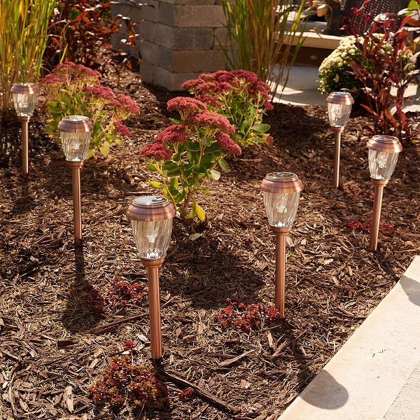 Charleston Solar Pathway Lights-Copper 6 Pack