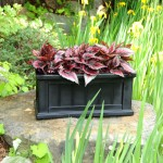 Cape Cod Patio Planter 11x24