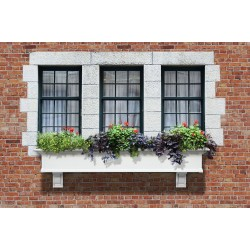 Yorkshire Window Box 6ft White